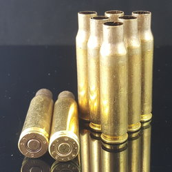 .308 WIN L.C. Factory Primed Brass 100+